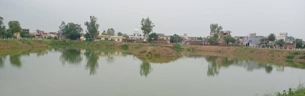 The Punjab government started the pond cleaning project on May 12. Photo: Kahan Singh Pannu