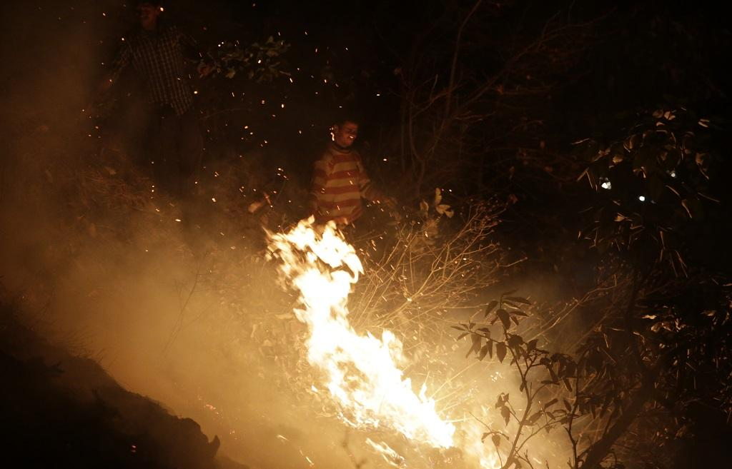 Forest fire incidents increased due to climate change