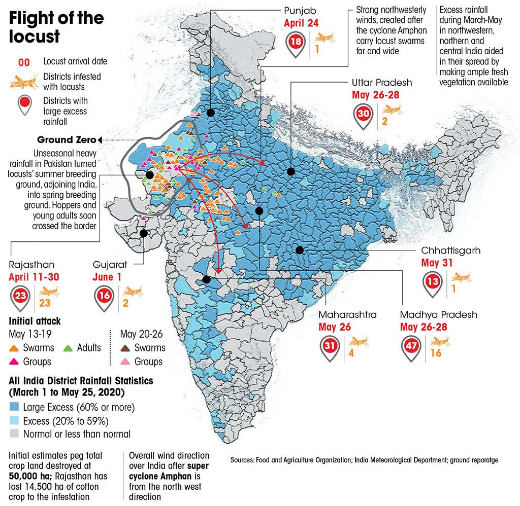 Sources: Food and Agriculture Organization; India Meteorological Department; ground reporatge (Graphic: Sanjit / CSE)