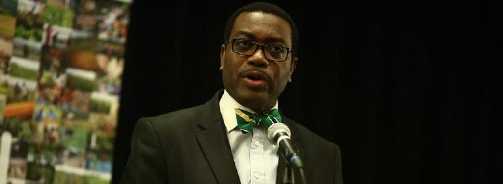 Akinwumi Adesina leads a bank that has the US as its second largest shareholder. CGIAR / Wikimedia Commons, CC BY-NC-SA