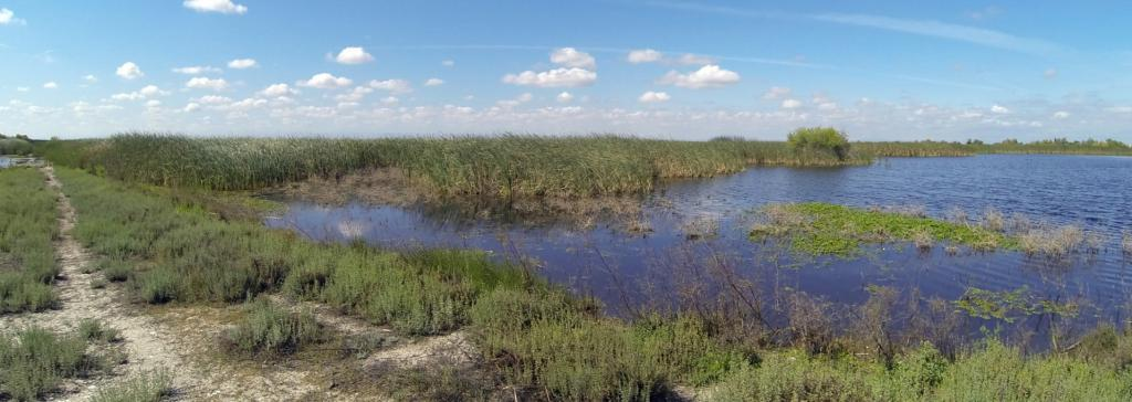 Wetlands contributed the most of the methane emissions at 30 per cent. Photo: publicdomainpictures.net