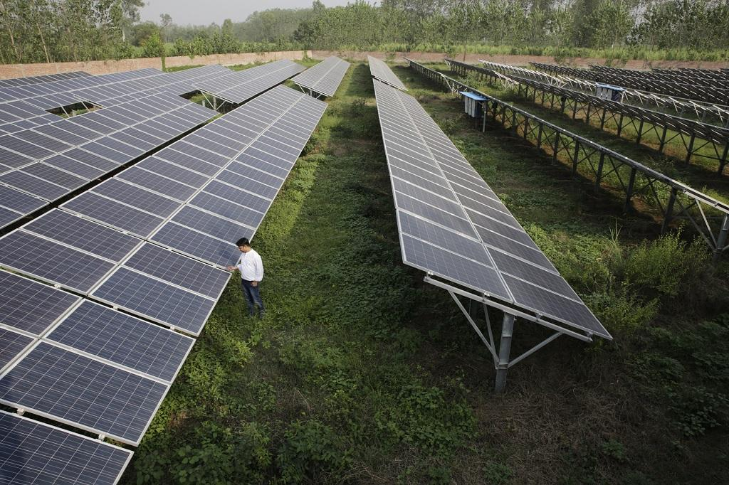 Issuance of green bonds saw a late surge in 2020