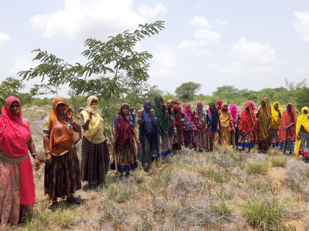 Women are populating the barren land
