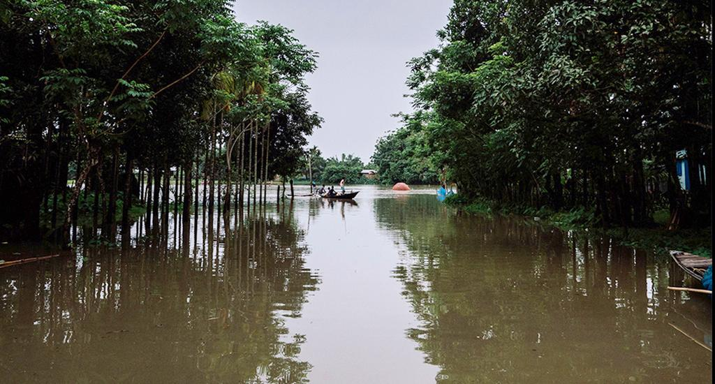 The floods have been accompanied by loss of animal life, severe damage to agricultural crops, property and displacement. Absence of flood preparedness and early warning system and delayed relief action by the government compounded the disaster. Photo: Akash Basumatari