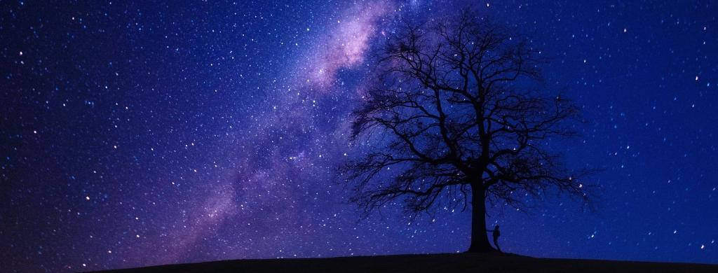 The Astronomy Genealogy or AstroGen project provides information on more than 33,000 astronomers. Photo: Pixabay
