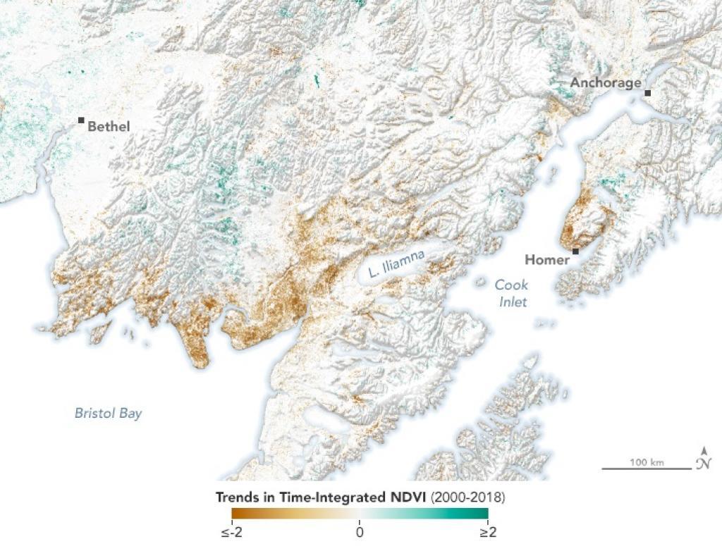 Alaska's ecosystem