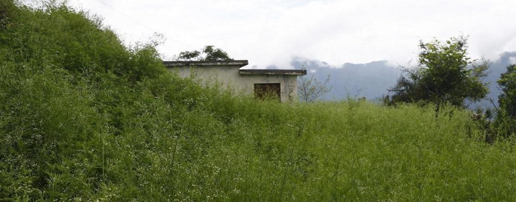 Uttarakhand's ghost village: Where nobody returned despite COVID-19 lockdown
