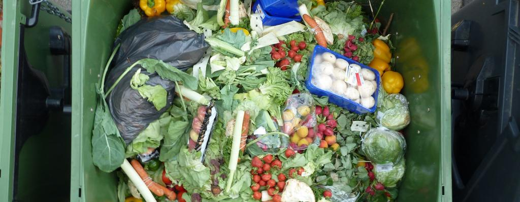 Per capita food wastage footprint on climate in high-income countries is more than double that of low-income countries. Photo: Wikimedia Commons