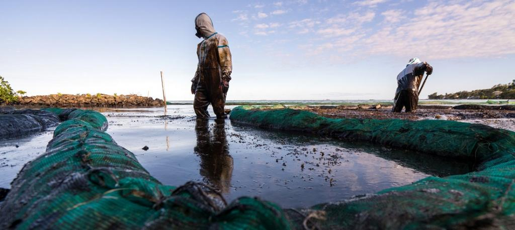 Mauritius is reeling from a spreading oil spill – and people are angry with how the government has handled it. Photo: Ariel Saramandi / Twitter