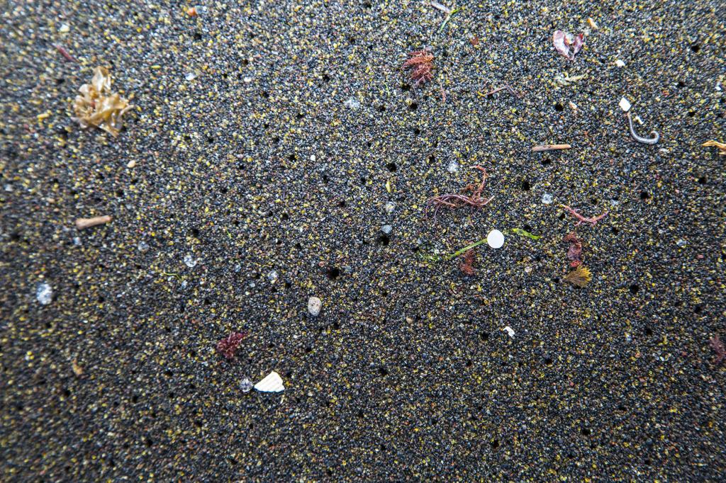 Atlantic Ocean contains 10 times more microplastics than previously thought. Photo: Wikimedia Commons