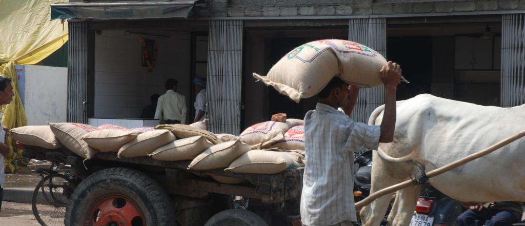 The bigger challenge is for the announced MSP to be translated to real gain in farmers' incomes. Photo: Agnimirh Basu