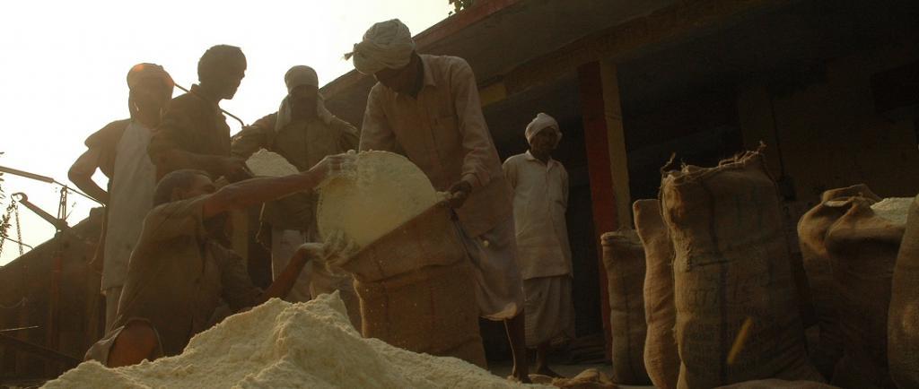 Bedeviled by storage, price problems, govt recommends grain procurement restriction, diversion. Photo: Agnimirh Basu / CSE