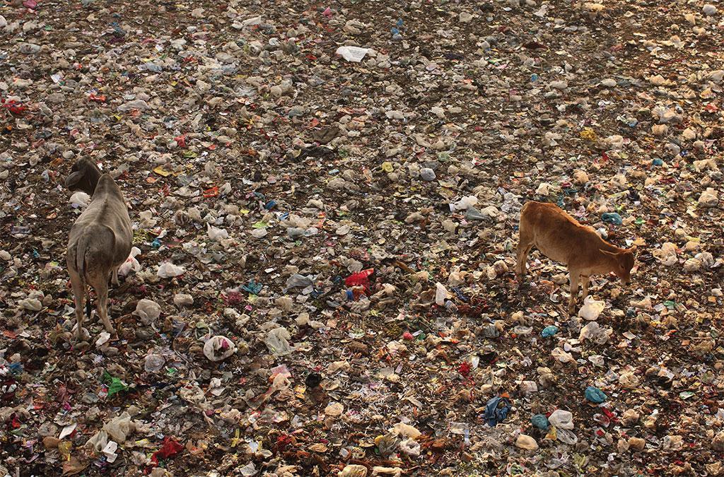 नई दिल्ली रेलवे स्टेशन के निकट प्लास्टिक कचरे का ढेर। प्लास्टिक को एंथ्रोपोसीन के प्रतीक के रूप में देखा जा रहा है