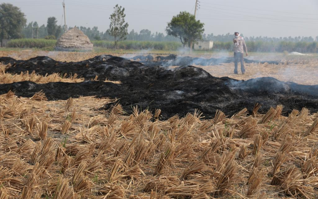 Counting north India's stubble fires: Stronger data science needed to study winter smog. Photo: Vikas Choudhary / CSE