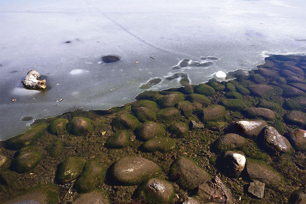 कनाडा में न्यू ब्रंसविक के सेंट जॉन में स्थित रॉकवुड पार्क। यहां बर्फ पिघल रही है। माना जा रहा है कि यहां इंसानों के जाने बाद बर्फ पिघलनी शुरू हुई।