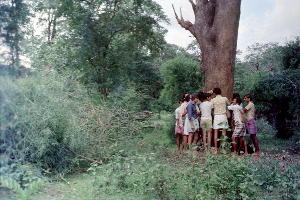 कर्नाटक का मशहूर अप्पिको आंदोलन, स्रोत : बाबा मायाराम