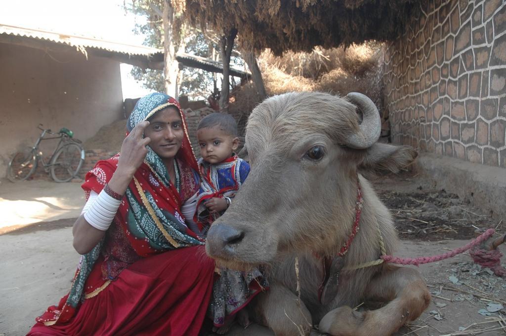गांवों में रह रही महिलाएं लगभग 5 घंटे अपने परिवार की देखभाल में खर्च कर देती हैं। फोटो सम्राट मुखर्जी/सीएसई