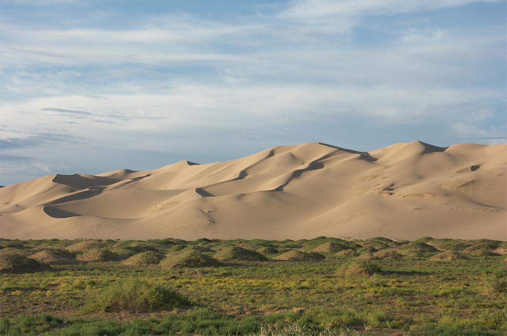 Steppe-desert biome in Central Asia