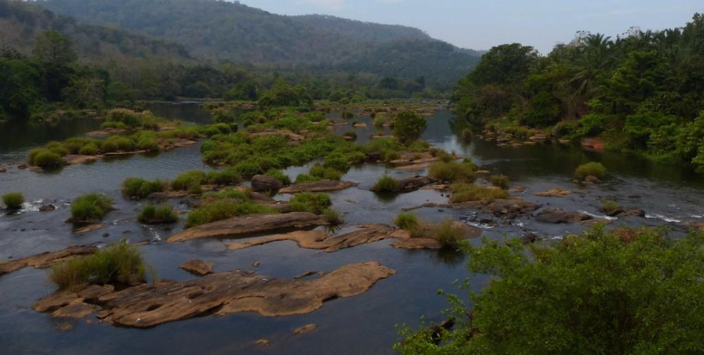 Kerala's Kadars continue fight for assertion of their community forest rights. Photo: Sanket Bhale / WWF
