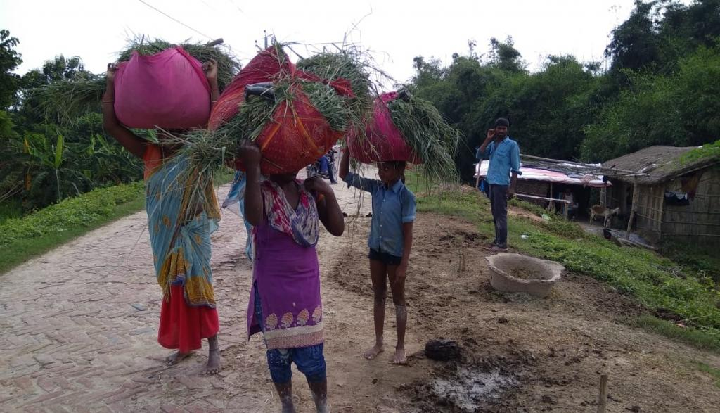Little children carrying mud from Bagmati river for repairing houses in Sitamarhi district. Photo: C K Manoj