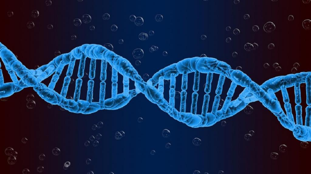 32% of genetic variations in Indian sequences are unique as compared to global genomes: Research. Photo: Pixabay