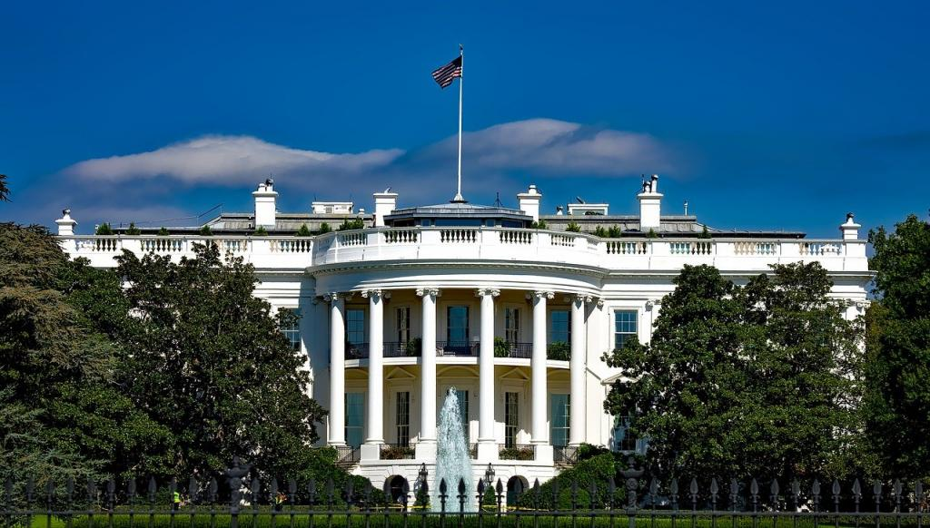 Book Digest: History of US presidential elections, India's fight against COVID-19 and more. Photo: Pixabay