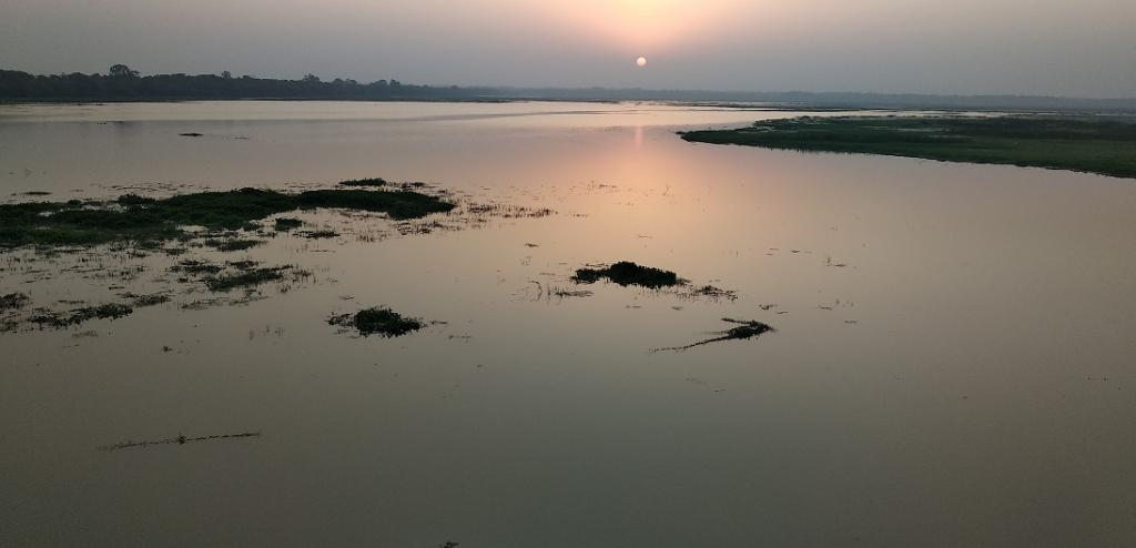 Haiderpur wetland gets a face-lift as biodiversity hotspot. Photo: TSA-India