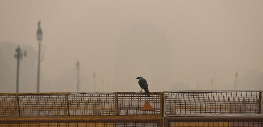 Air quality in Delhi deteriorates on Diwali evening. Photo: Wikimedia Commons