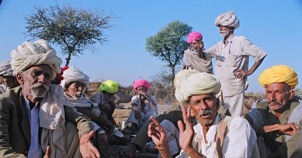 Rajasthan camel breeders threaten to leave animals with district collectors. Photo: Sopan Joshi / CSE