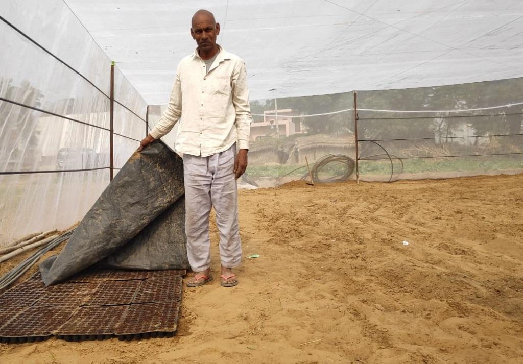 कृषि विज्ञान केंद्र से लगातार संपर्क में रहने वाले गुलाब सिंह ने अपने आधे एकड़ के खेत में कृषि विज्ञान केंद्र की मदद और मार्गदर्शन से पॉलीहाउस लगाया है। फोटो: भागीरथ