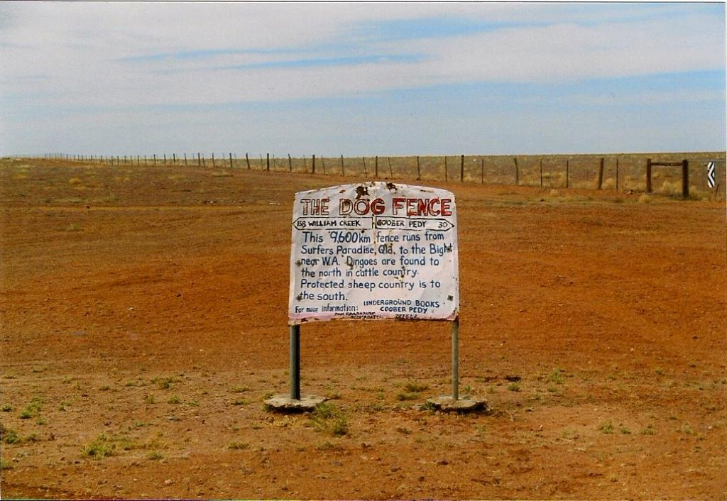 Australia's dingo fences, built to protect livestock from wild dogs, stretch for thousands of kilometers. Marian Deschain/Wikimedia, CC BY-SA