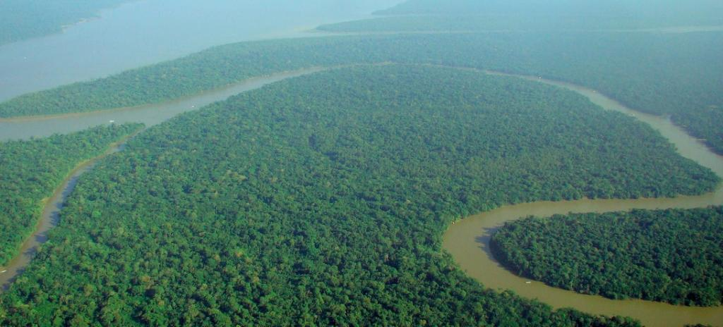 Deforestation in Brazilian Amazon spikes to 12-year high: Brazil institute. Photo: Wikimedia Commons