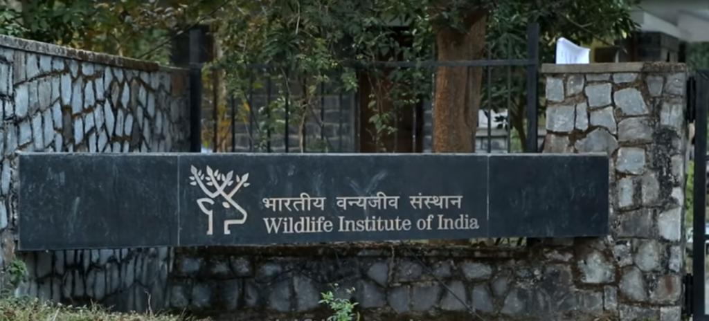 Disengaging with WII should be given rethink, MoEF&CC tells PMO: RTI