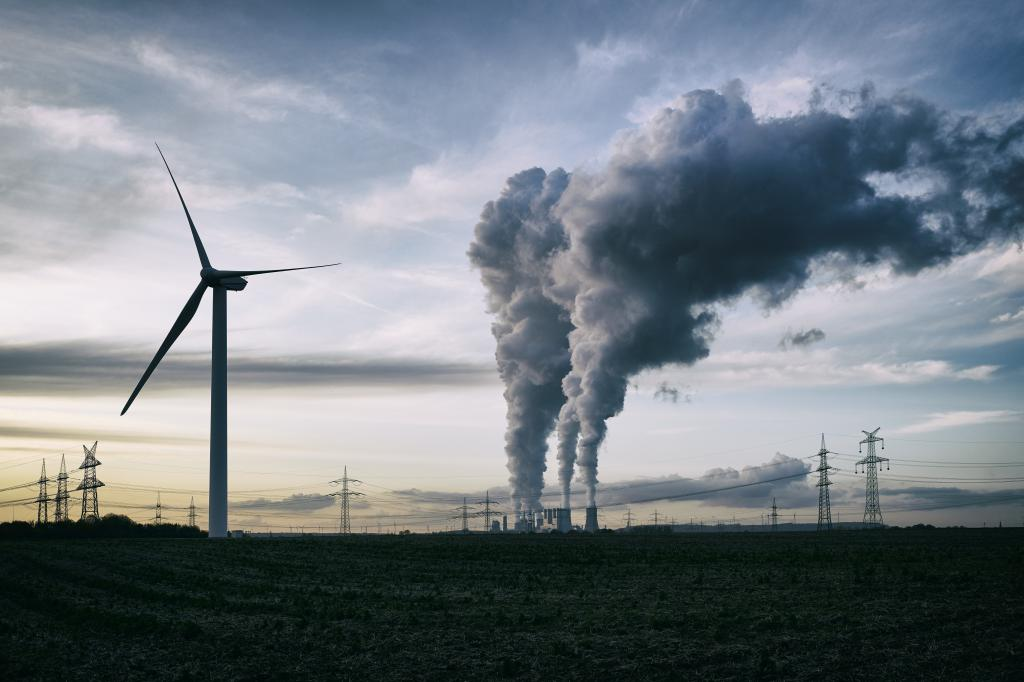 The Union Budget 2021-22 did not speak about meeting renewable energy targets.