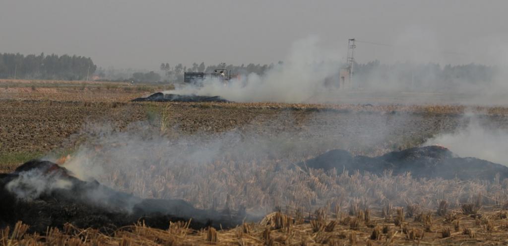 Bihar cracks down on errant farmers for stubble burning. Photo: Vikas Choudhary / CSE