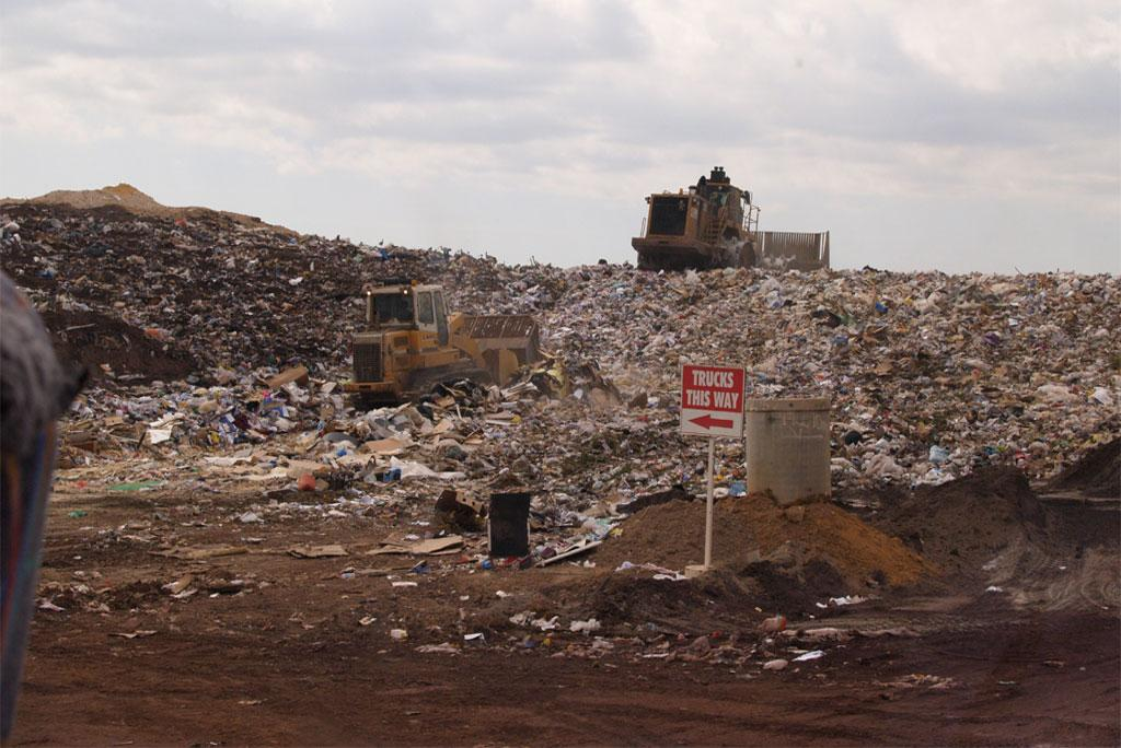 Use of manure in landfill can have environmental benefits