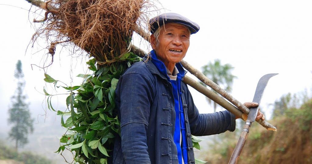 A farmer in Yunnan Province, China. Photo: Wikimedia Commons