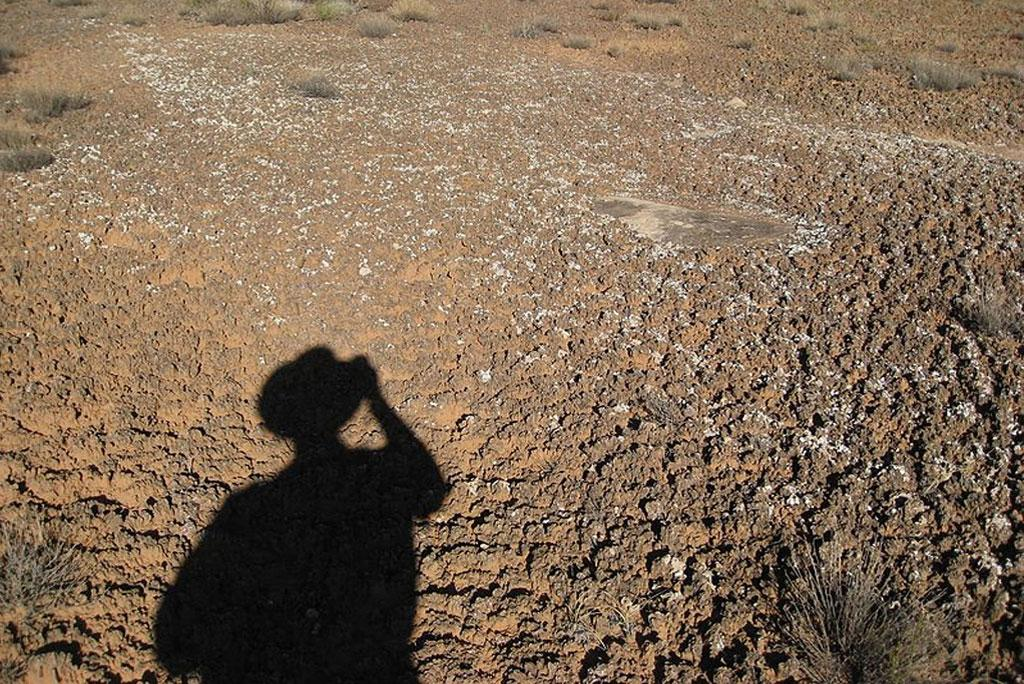 Soil moisture adversely affects water availability in dry areas