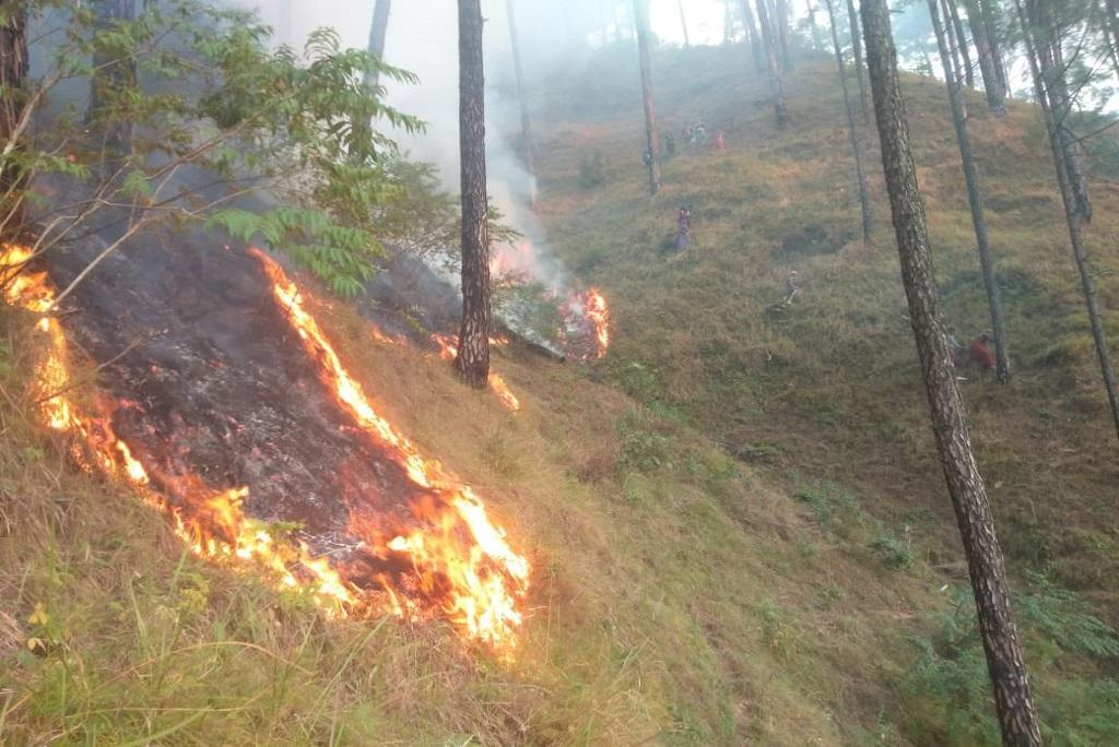 Fire at Kedarnath wildlife sanctuary. Experts say Uttrakhand may experience forest fires round the year. Photo: Varsha Singh