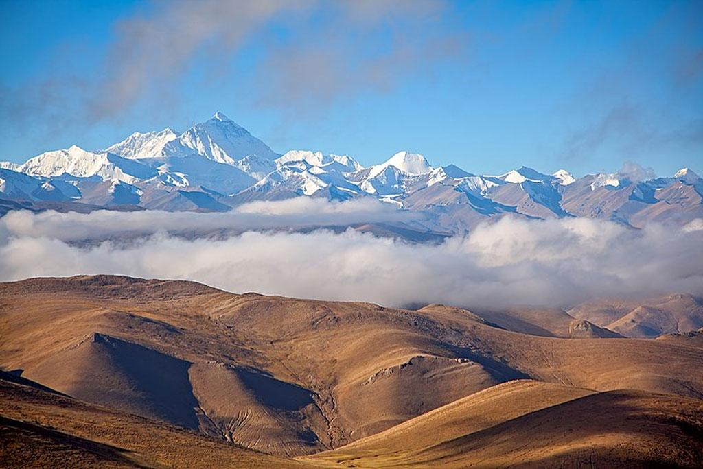 How the development of vegetation and plants of northern Tibet called 'land of milk and honey'