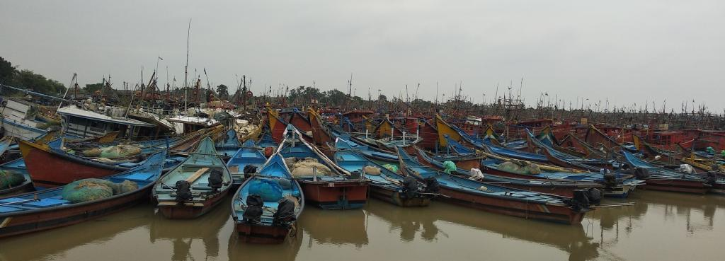 Odisha's fishing community welcomed the budgetary allotments towards the sector