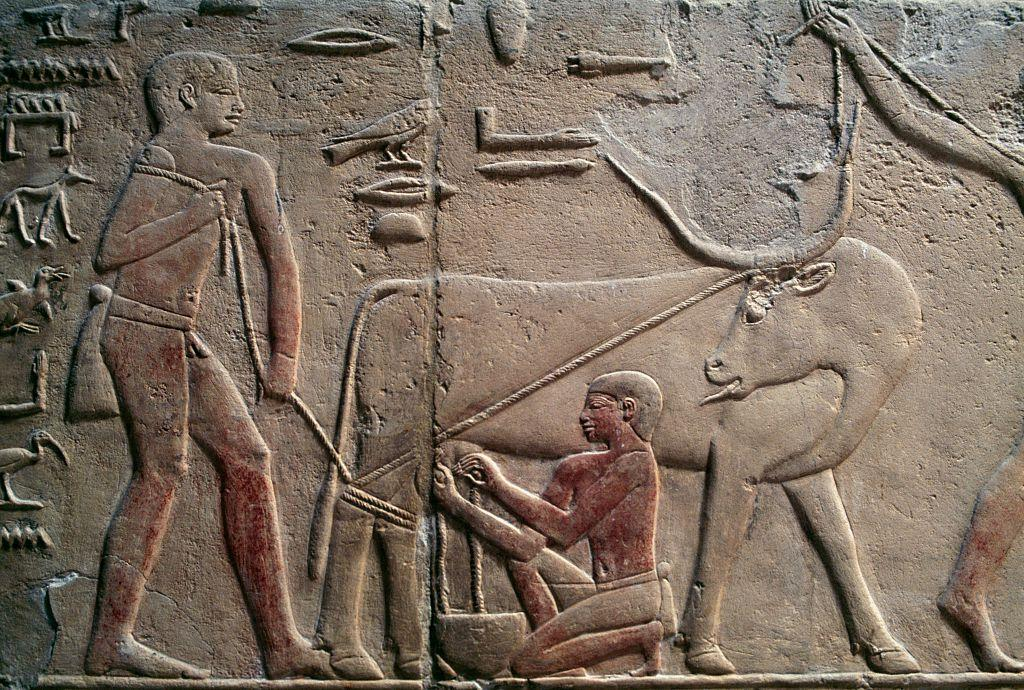 Environmental change may have played a role at the dawn of Egyptian history
