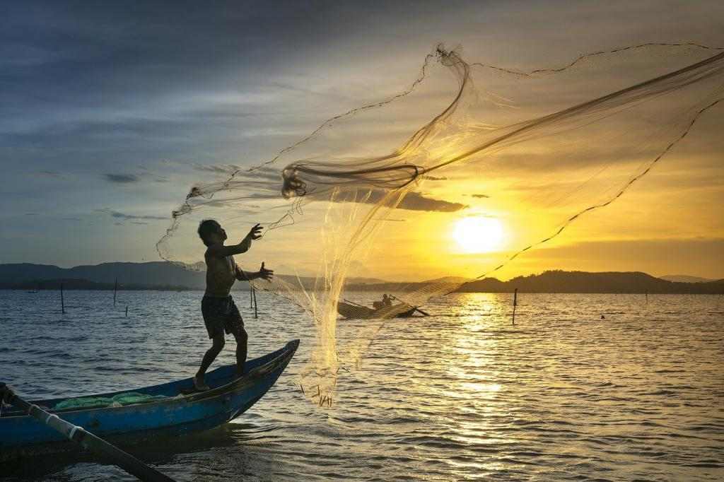 The FAO, in its first ever Declaration for Sustainable Fisheries and Aquaculture, pressed for stronger action to combat illegal, unreported and unregulated fishing. Photo: Pixabay