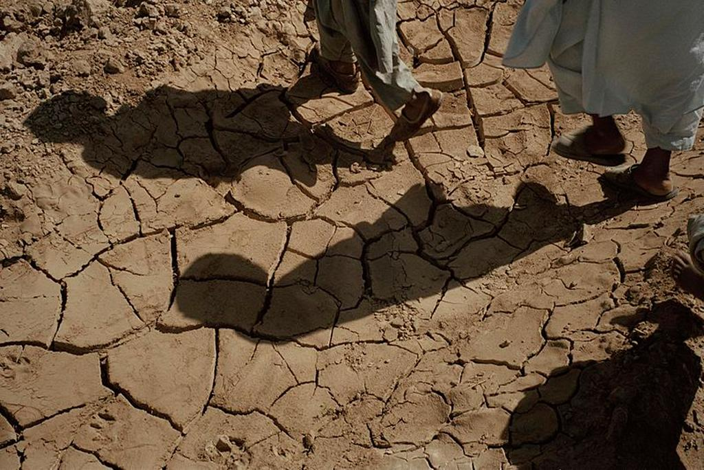 Rising temperature slows down economic growth