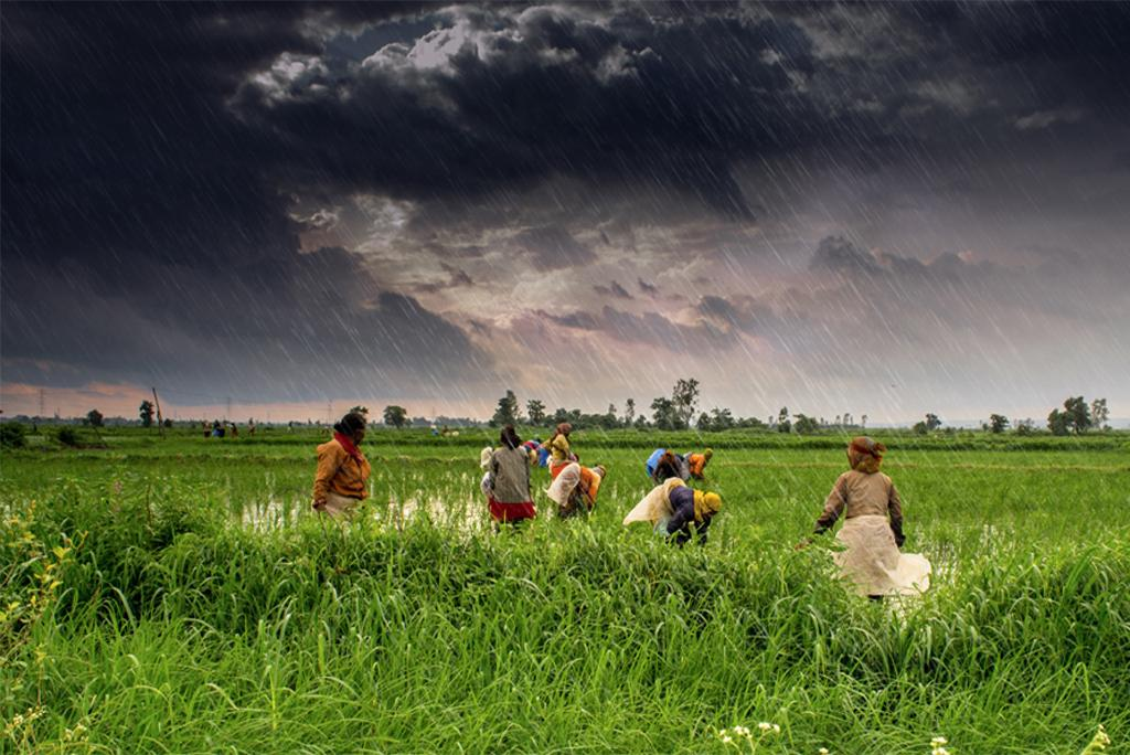 Indian farmers will benefit from early monsoon forecast