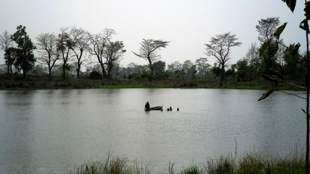 A lake near Valmiki Tiger Reserve. The tigress who had strayed out of the reserve and killed 3 in Bihar has died. Photo: Wikimedia Commons