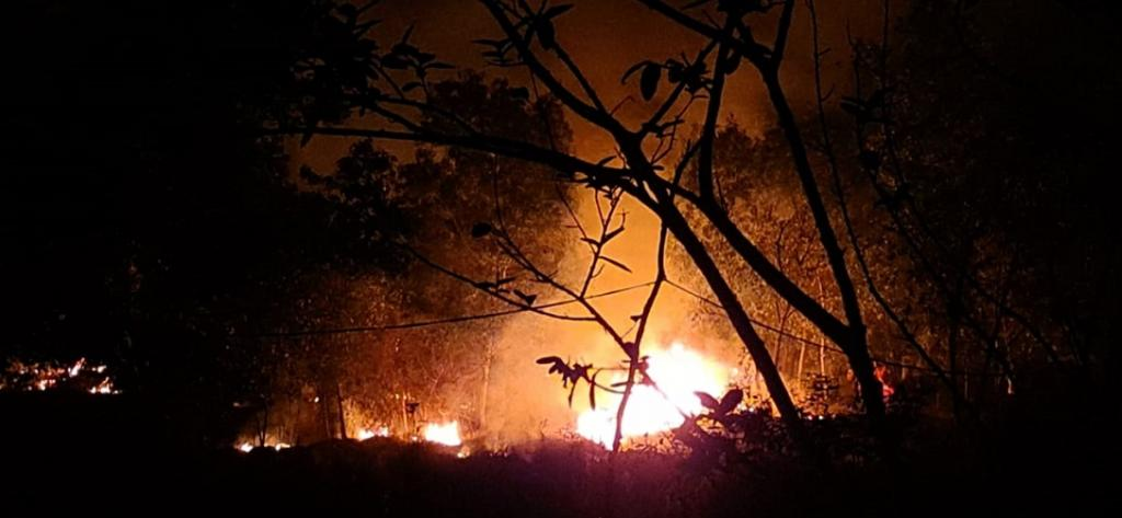 A burning Similipal. Photo from the twitter account of Akshita M. Bhanj Deo @TheGreatAshB, a member of the erstwhile royal family of Mayurbhanj