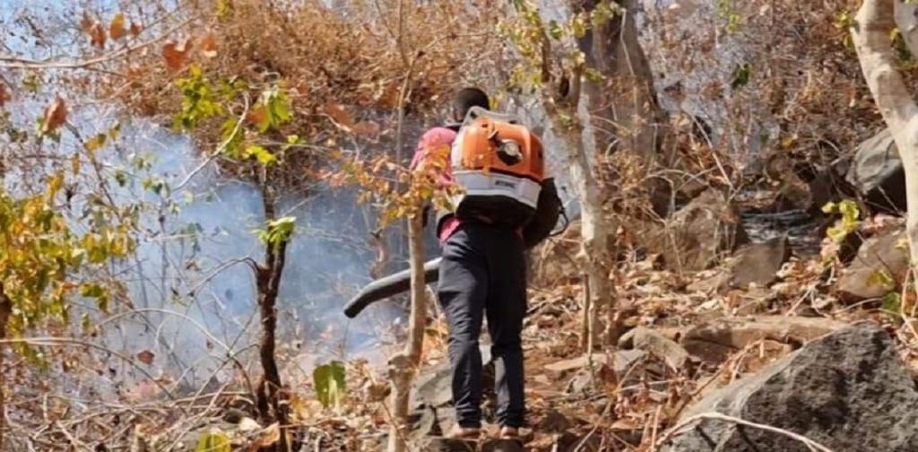 A man dousing a fire in Similipal, Odisha. Photo: Ashis Senapati