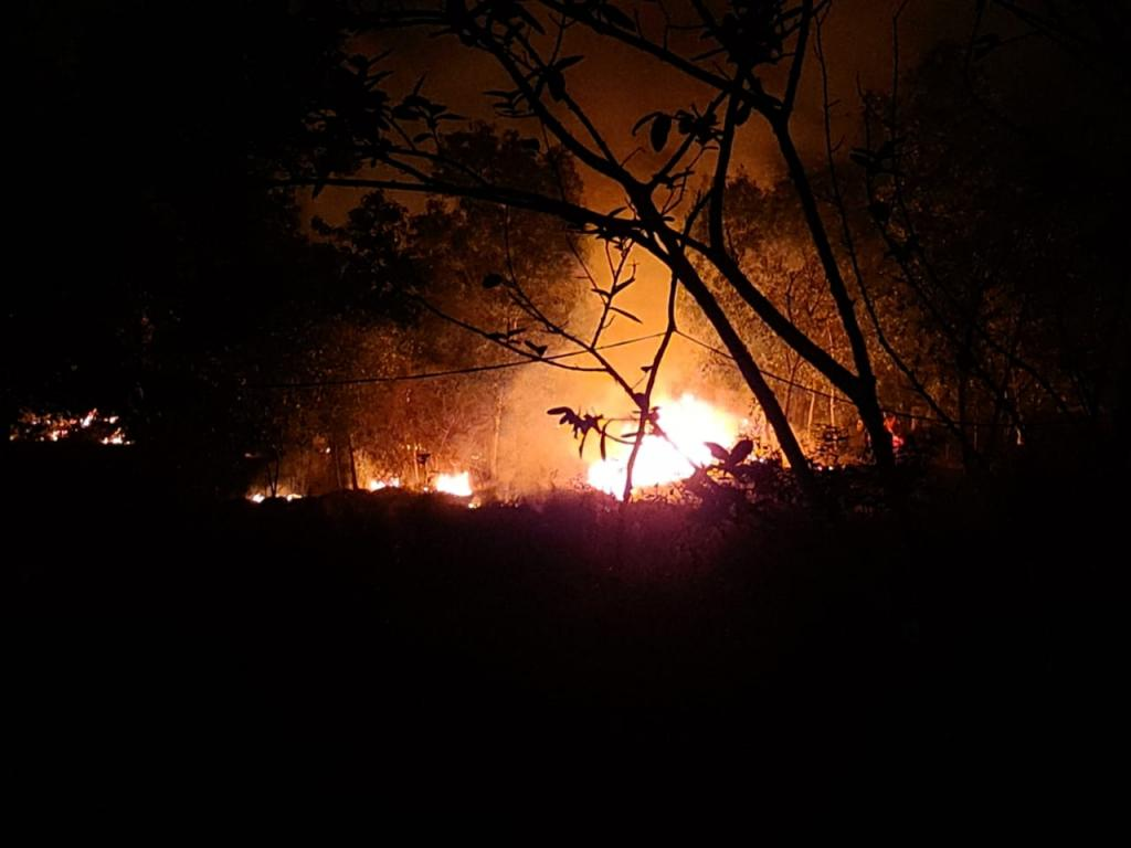 Fire has been raging in Similipal National Park fore more than a fortnight. Photo: Twitter / @kissfoundation