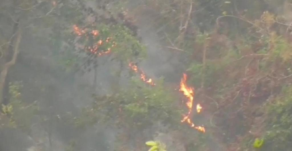 Similipal fires enter core areas, firefighters struggle in inaccessible forests.  Photo: Ashis Senapati